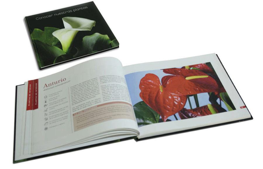 dg-design-maquet-libros1
