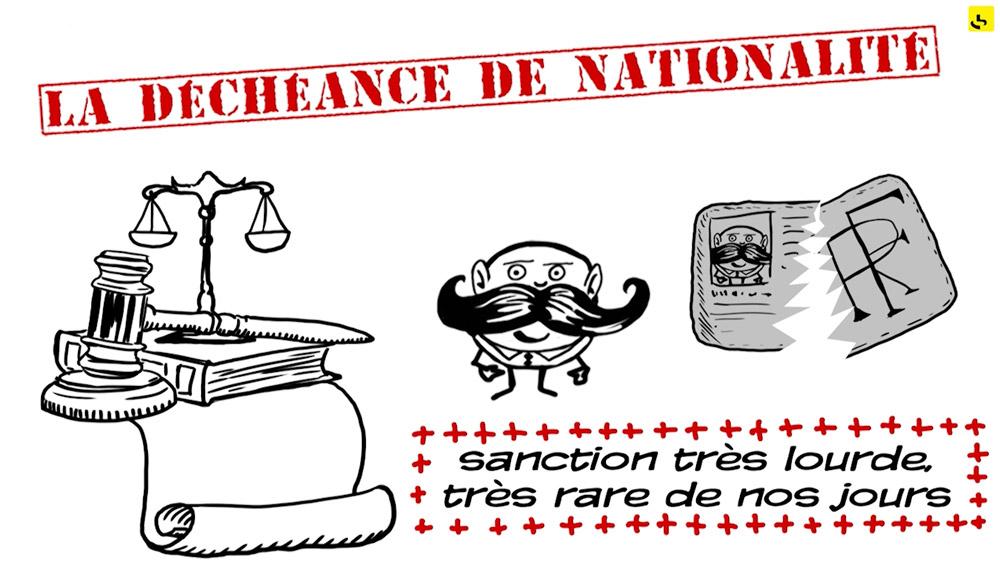 """La déchéance de nationalité, concrètement, c'est quoi ? création d'une animation hebdomadaire pour le web site du programme """"Expliquez-nous"""" de France info"""