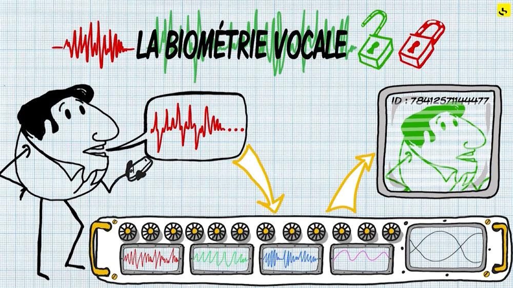 """La biométrie vocale, c'est quoi ? création d'une animation hebdomadaire pour le web site du programme """"Expliquez-nous"""" de France info"""