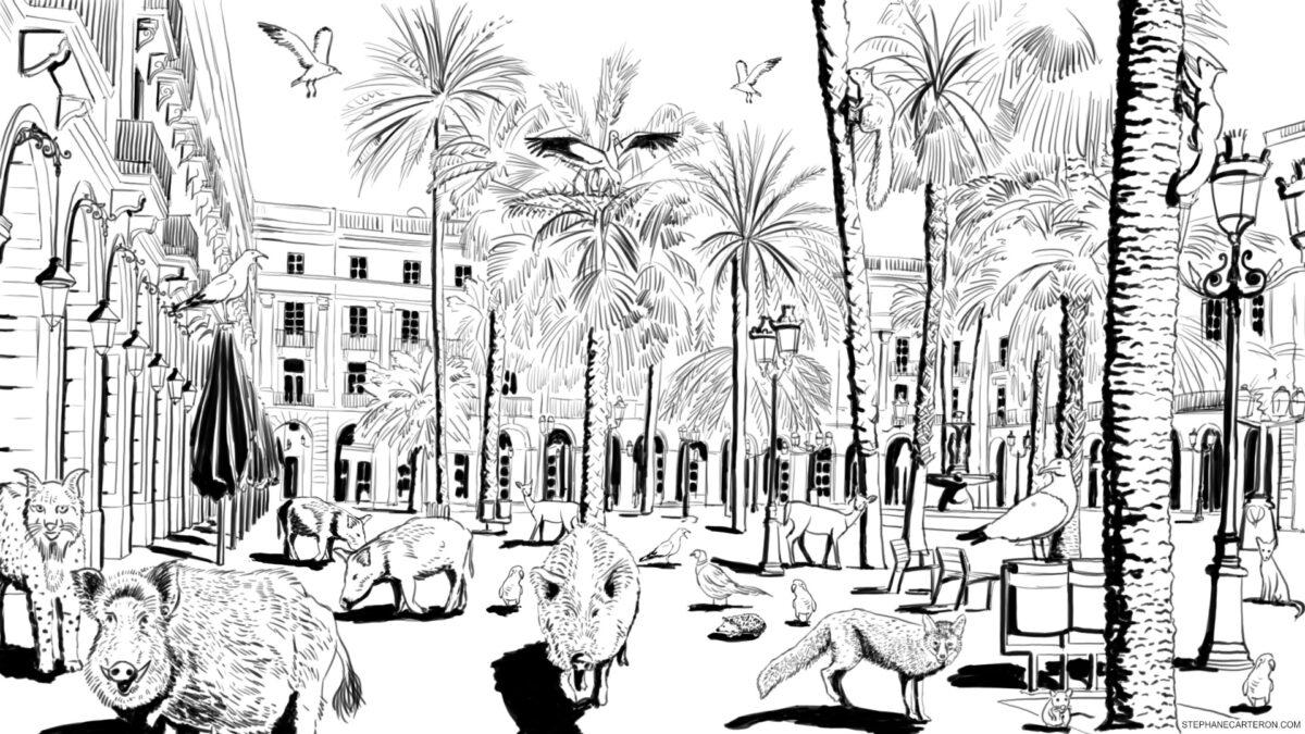 Barcelona, plaça reial 2020